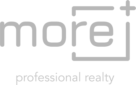 more - professional realty