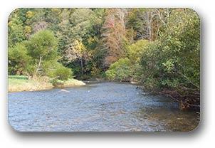 New River Todd NC