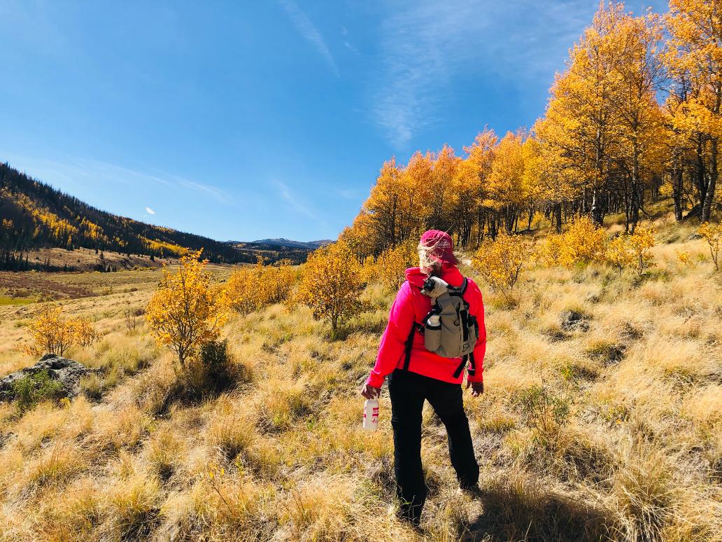 Summit County Fall Colorado