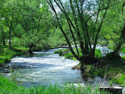 Wheat Ridge Colorado Homes for Sale