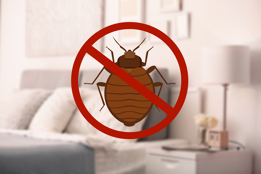 Get Reston real estate inspected for pests before selling.