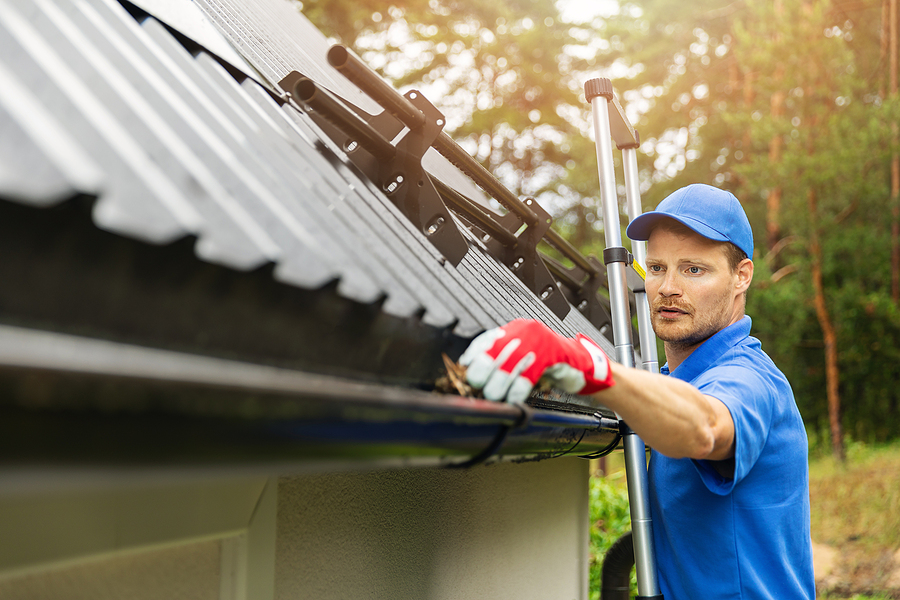 Reston property owners do fall maintenance.