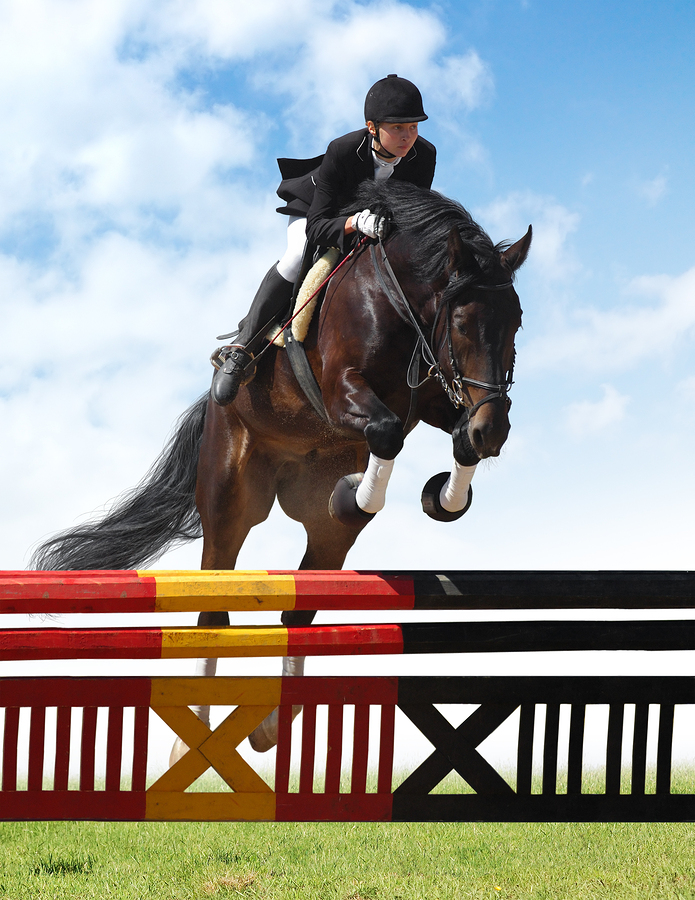 Palm Beach horse property owners go to PBIEC for jumping competitions.