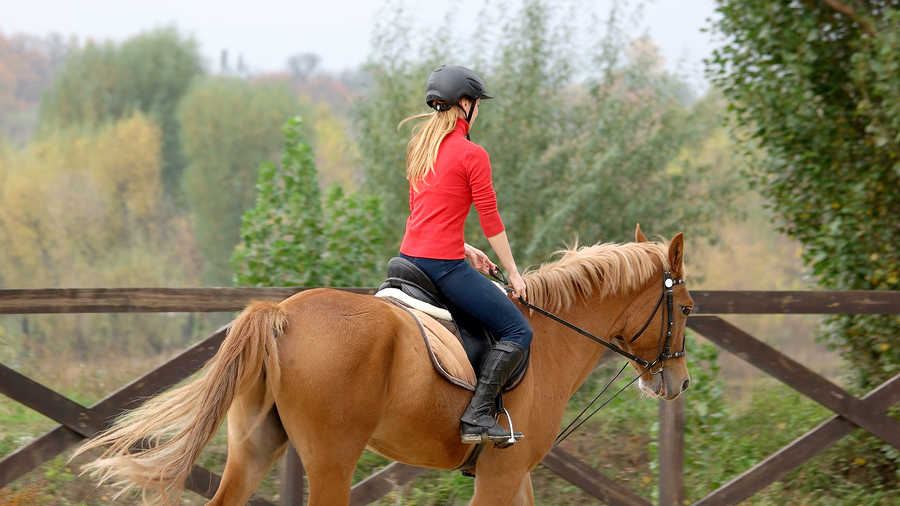 Take riding lessons near Miami equestrian homes
