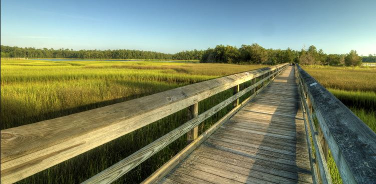 Walk through the salt marsh and gardens