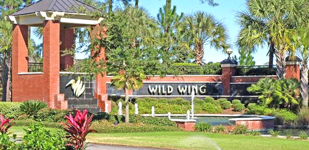 New Homes for Sale in Wild Wing Lakes