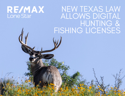 New Texas Law