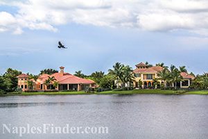Naples Lake View Homes Over $1,000,000
