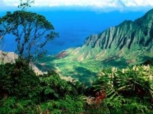 Kauai Aerial photo3