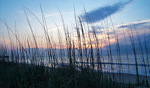 kure-beach-nc-vacation-home-rentals