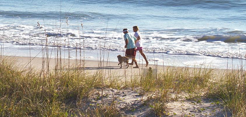 fdb310e207d8 Planning Your Carolina Beach Vacation
