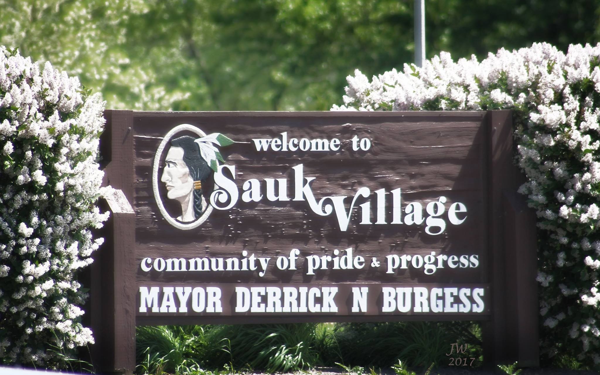 Sauk Village homes for sale