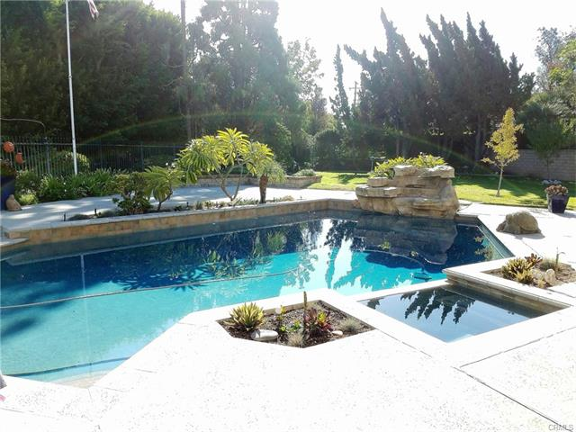 Backyard with Pool in La Habra