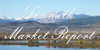 Timnath Real Estate Market Report