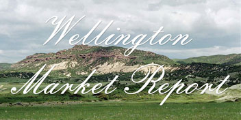 Wellington Real Estate Market Report