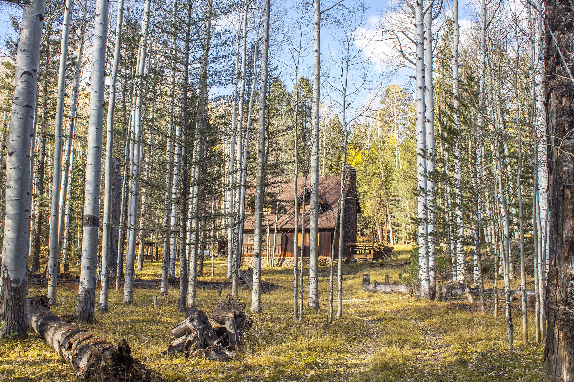 0 Hart Prairie Flagstaff, AZ 86001 (Bare Aspen Ranch)
