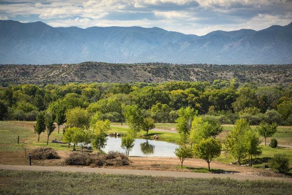 Pond Creek- 10973 E Majestic Way Cornville, AZ 86365