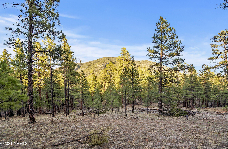 4195 N Subera Lane, Flagstaff, AZ 86001