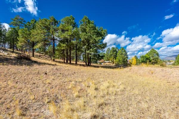 4551 Green Mountain Drive Unit 66, Flagstaff, AZ 86004