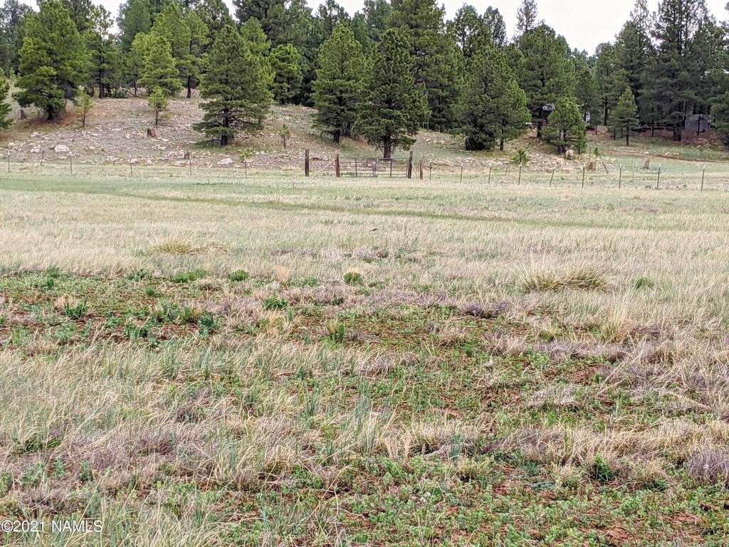 5576 Big Game Trail Flagstaff, AZ 86001