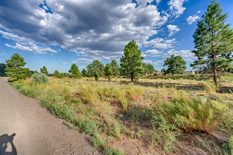 5830 Provided Way Way, Flagstaff, AZ 86003