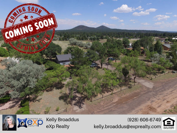 7825 N Hummingbird Lane Flagstaff, AZ 86004