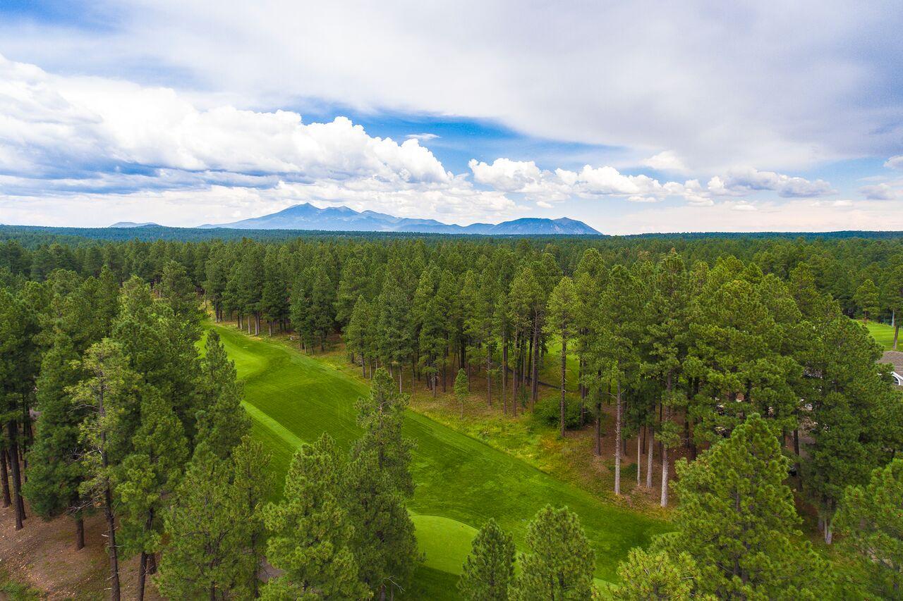 Forest Highlands