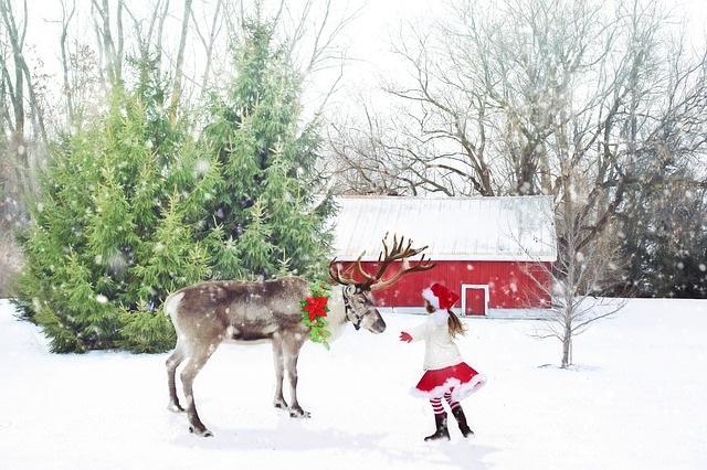 2017 Holiday Christmas things to do in Fort Collins // Real Estate and Lifestyle in Northern Colorado, a blog by Joanna Gyrath, REALTOR