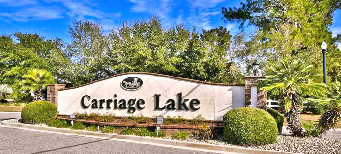 Homes for Sale in Carriage Lake
