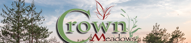 New Homes for Sale in Crown Meadows