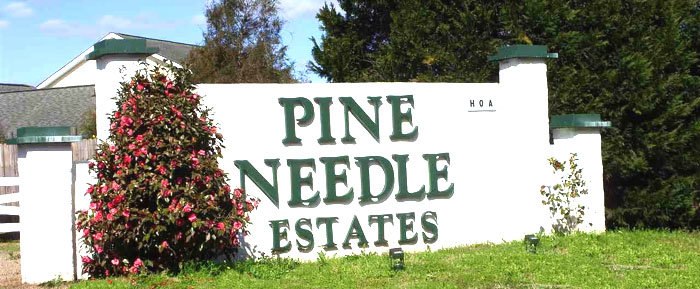 Homes for Sale in Pine Needle Estates, Longs