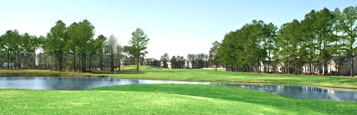 Palmetto Greens Golf Course in Sun Colony
