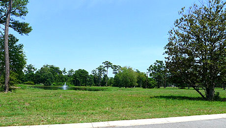 Seabrook Plantation Lots for Sale