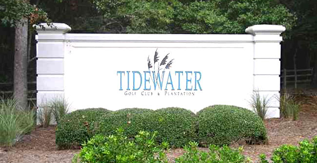 Homes for Sale in Tidewater Plantation