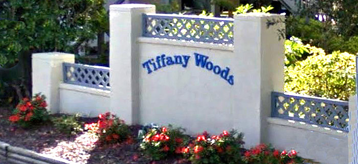 Homes for Sale in Tiffany Woods