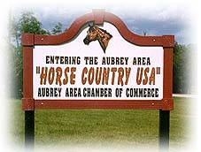 Aubrey Texas Real Estate Horse Country USA