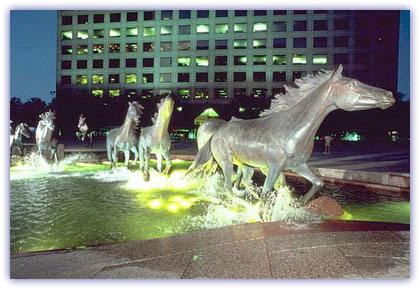 Irving Texas Real Estate - Irving Horses