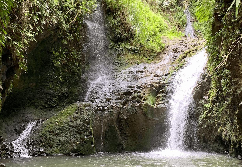maunawili trail to maunawili falls