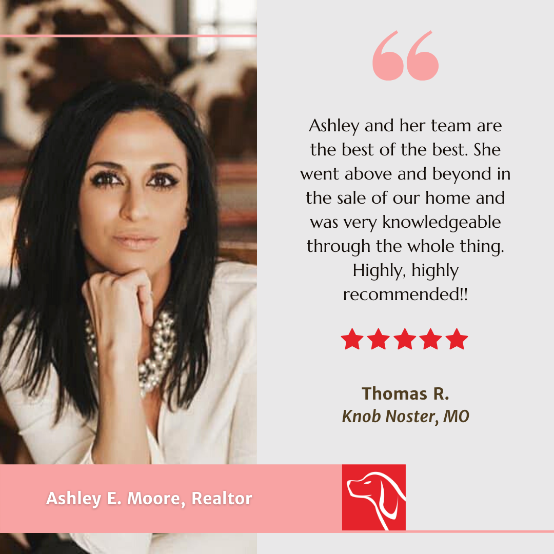 Ashley's Customer Review