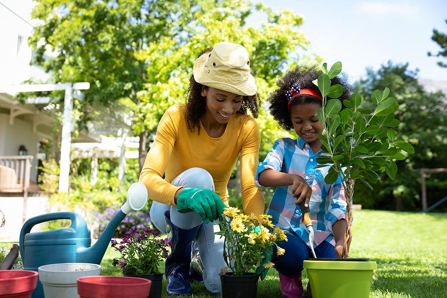 Newport Beach home owners get gardening goods at Roger's Gardens.