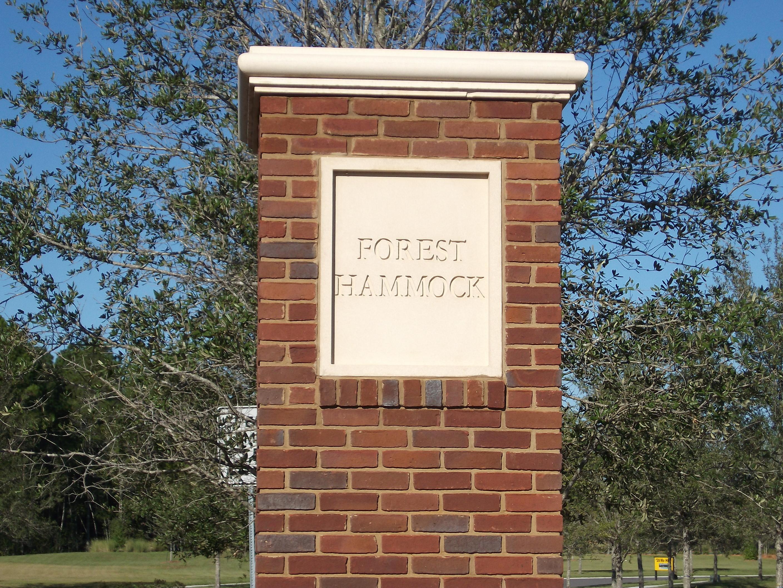 Forest Hammock Homes For Sale Orange Park FL