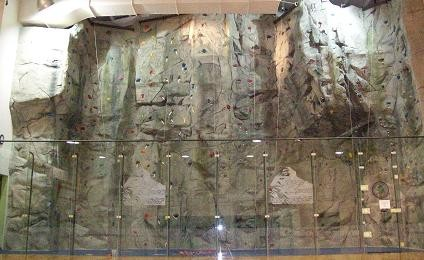 Oviedo Rock Wall