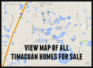 Map of Timacuan Homes For Sale