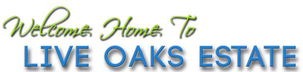 live oak estates at lake nona; orlando realty pros