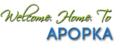 Welcome home to Apopka, Florida