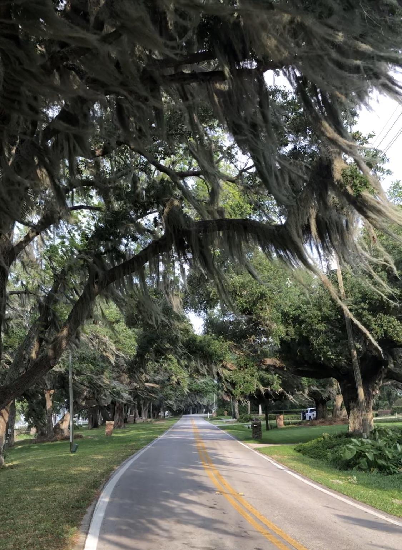 Lakeshore Drive, Mount Dora, FL