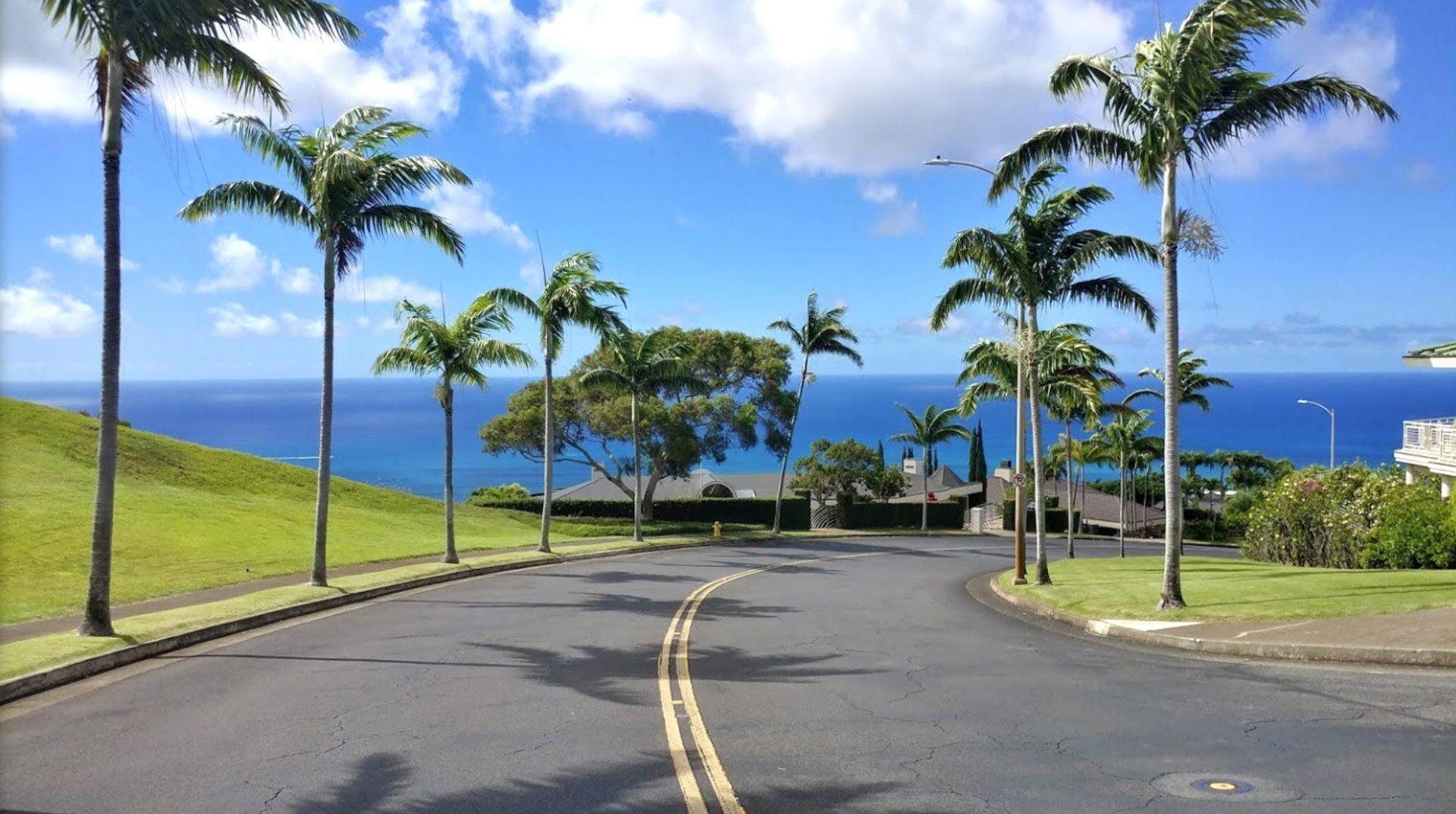 Hawaii Loa Ridge neighborhood guide