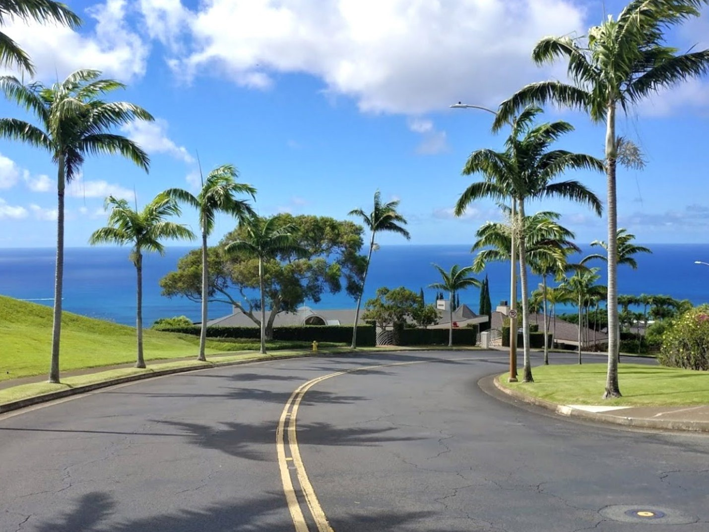 Hawaii Loa Ridge neighborhood guide