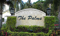 Ballenisles the palms