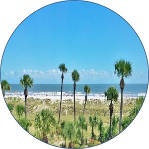 Palmetto Dunes Oceanfront Properties